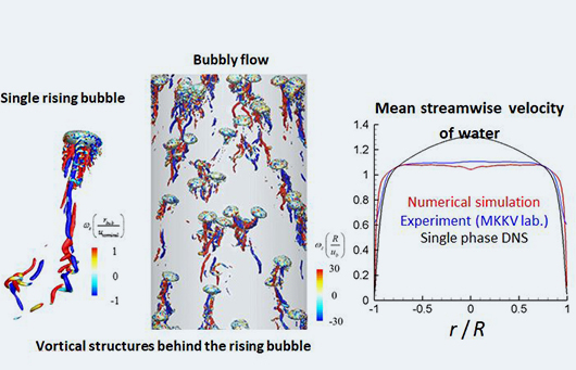 Turbulent bubbly Flow